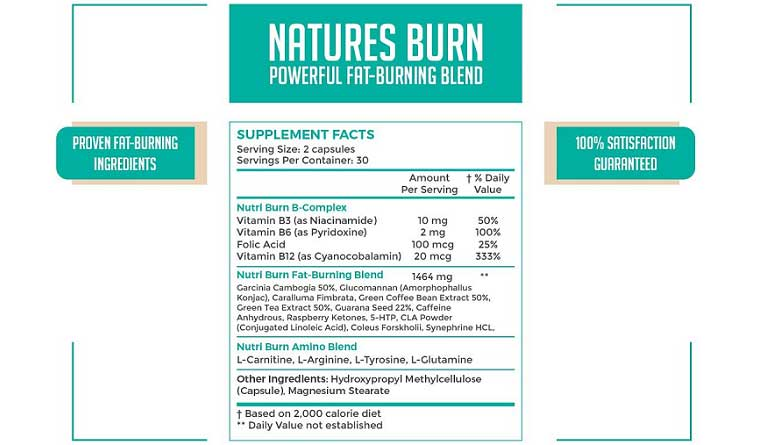 NutriChem Labs NATURES BURN main ingredients and supplements
