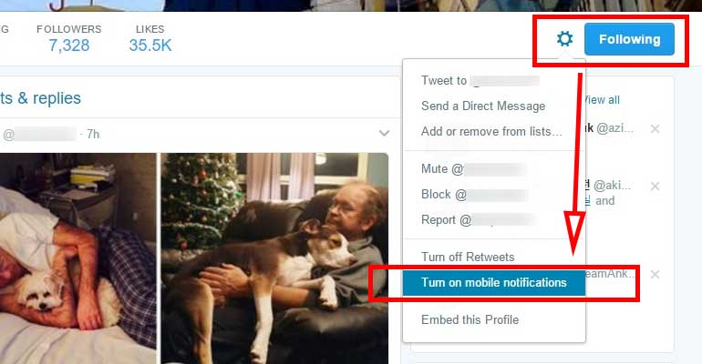How To Turn On Tweet Notifications On Twitter