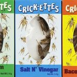 Crickets-Sampler-Gift-Pack-800x445m