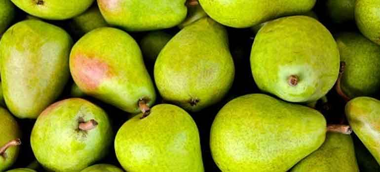Foods to Feed Your Dog That Are Healthier Than Treats Pears 770