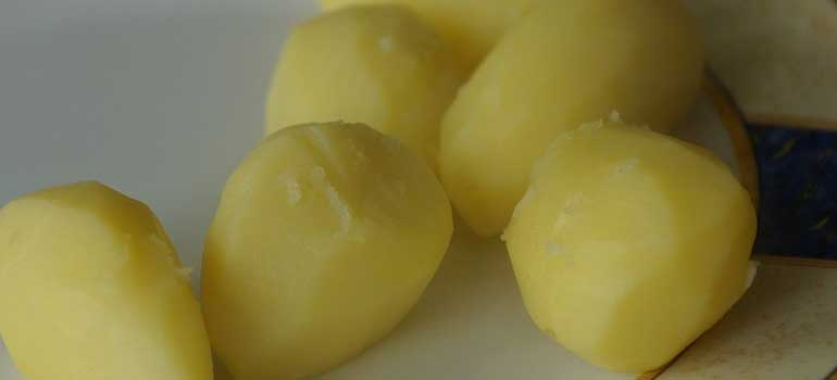 Foods to Feed Your Dog That Are Healthier Than Treats Potatoes 770