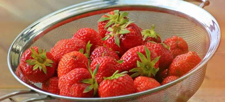 Foods to Feed Your Dog That Are Healthier Than Treats strawberries