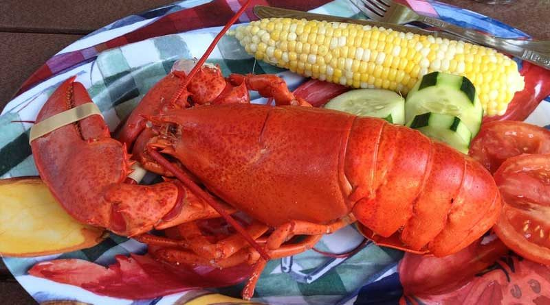 how to boil a lobster 800x445